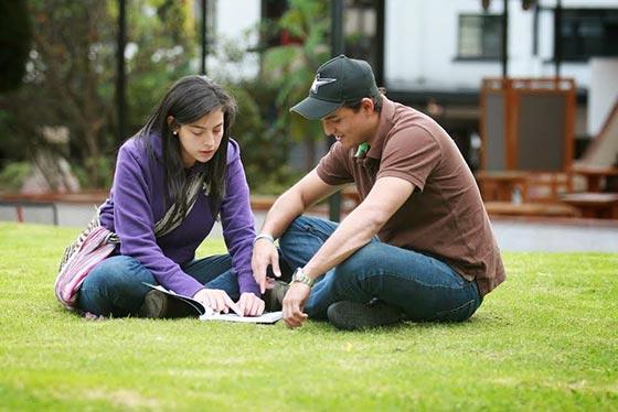 ¿Qué son los cursos homologados?