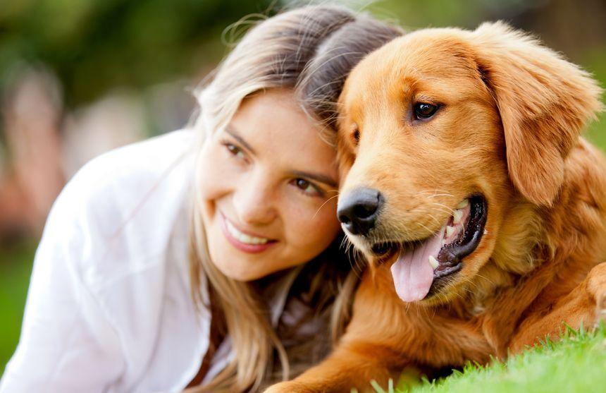 Perros: el mejor amigo y terapeuta del hombre