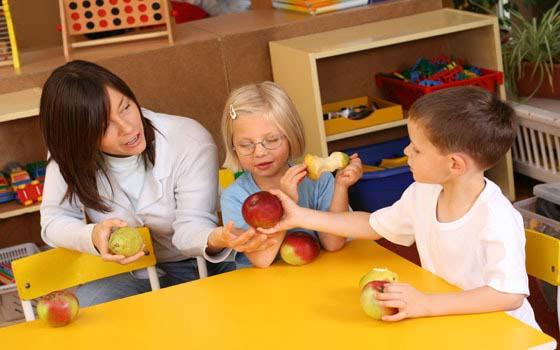 Curso en l nea online de monitor de comedores escolares for Monitor comedor escolar