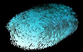 Curso virtual de Detective Privado e Investigación Policial