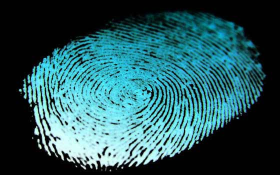 Curso online: Detective Privado e Investigación Policial