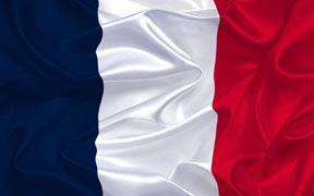 Curso online tutorizado de Francés