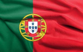 Curso online tutorizado de Portugués