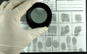 Pack de 3 Cursos virtuales: Especial Criminalística y Perfilación Criminal