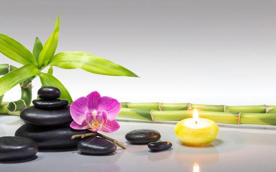 Pack de 3 cursos online de feng shui hogar negocios y exteriores aprendum Feng shui hogar