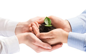 Postgrado online en Responsabilidad Social Corporativa (Titulación Universitaria)
