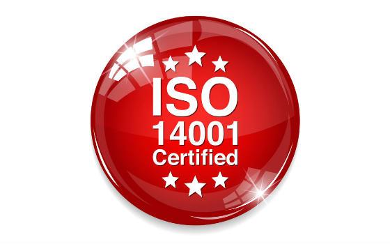 Master virtual en Medio Ambiente ISO 14001:2015 y Auditorías Ambientales + Certificación Notario Europeo