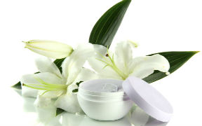 Curso en línea (Online) de Cosmetología Natural