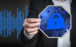 Curso a distancia (Online) de Implantación de la Protección de Datos según el RGPD