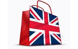 Curso a distancia (Online) de Inglés Profesional para Actividades Comerciales
