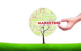 Curso online de Marketing Ecológico