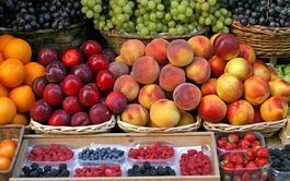 Curso online de Comercialización de Frutas y Verduras Procesadas