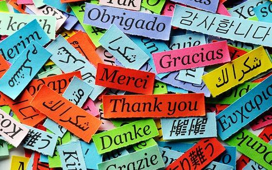 Acceso a 5 cursos de idiomas durante 3, 6 ó 12 meses