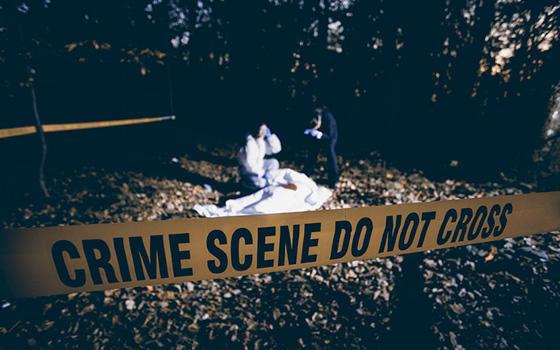 Máster online en Criminología y Criminalística