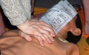 Curso online de RCP (Reanimación Cardiopulmonar) Básica y Primeros Auxilios