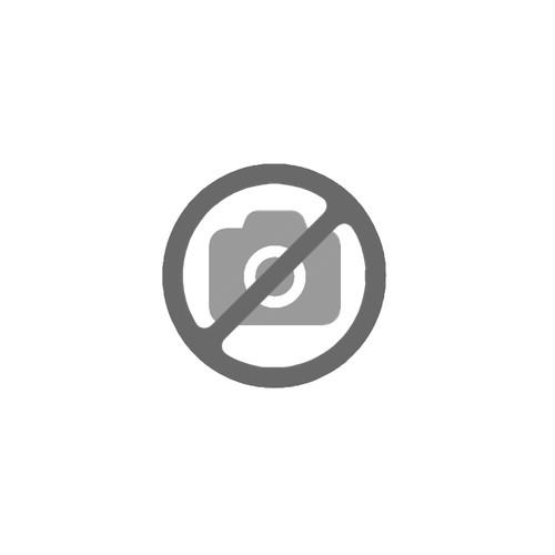 Curso de Tripulante de Cabina de Pasajeros (TCP)